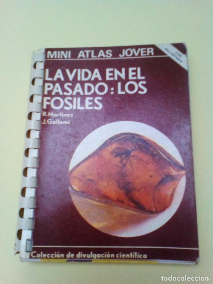 LA VIDA EN EL PASADO: LOS FÓSILES. (MINI ATLAS JOVER) (Libros de Segunda Mano - Ciencias, Manuales y Oficios - Paleontología y Geología)