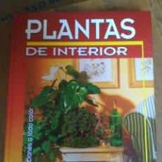 Livres d'occasion: PLANTAS DE INTERIOR - SUSAETA - JIRÍ HAAGER. Lote 176626005