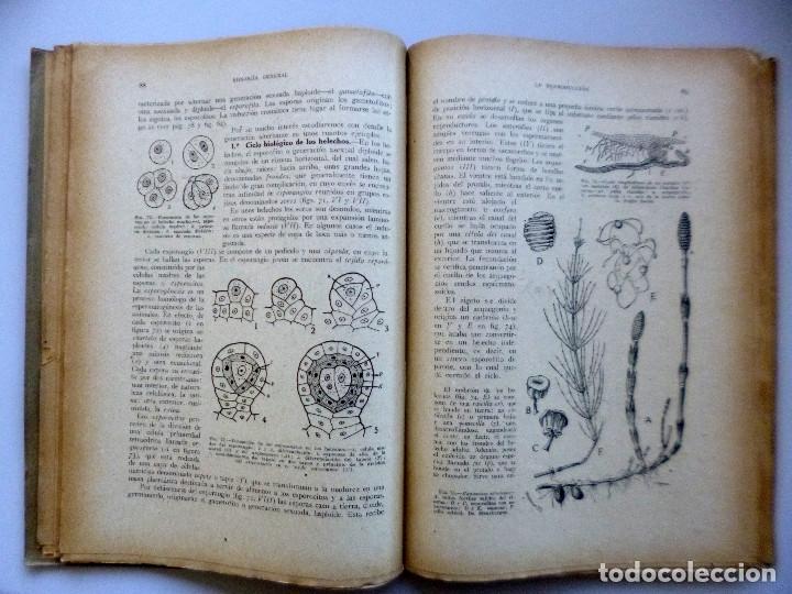 Libros de segunda mano: DR. SALUSTIO ALVARADO // BIOLOGÍA GENERAL, ECOLOGÍA Y BIOGEOGRAFÍA // 1940 - Foto 3 - 176775277