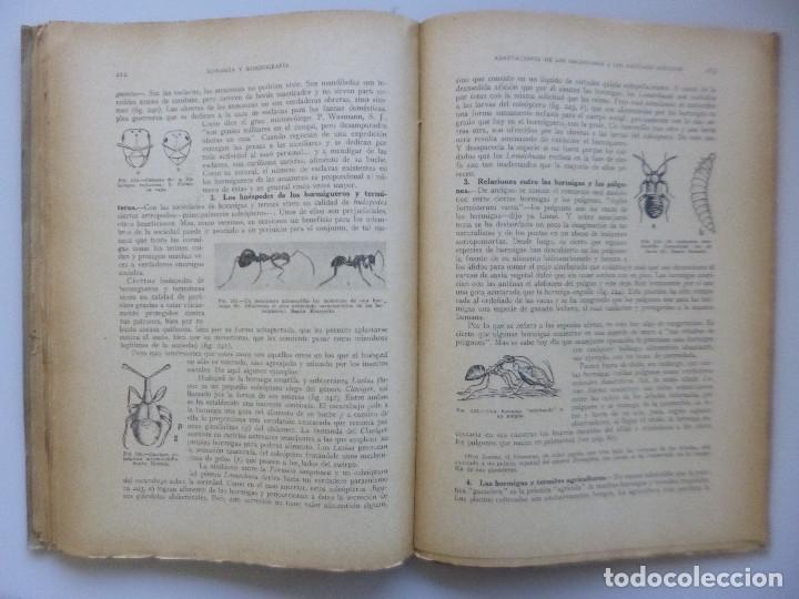 Libros de segunda mano: DR. SALUSTIO ALVARADO // BIOLOGÍA GENERAL, ECOLOGÍA Y BIOGEOGRAFÍA // 1940 - Foto 5 - 176775277