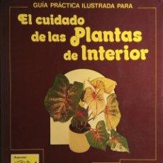 Libros de segunda mano: GUÍA PRÁCTICA ILUSTRADA PARA EL CUIDADO DE LAS PLANTAS DE INTERIOR / DAVID LONGMAN. BLUME, 1982. . Lote 177393597