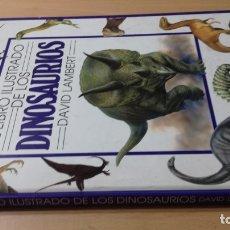 Libros de segunda mano: EL LIBRO DE LOS DINOSAURIOS - DAVID LAMBERT - . Lote 177684559