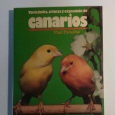 Libros de segunda mano: LIBRO CANARIOS VARIEDADES, CRIANZA Y EXPOSICIÓN DE PAUL PARADISE - HISPANO EUROPEA. Lote 177693830