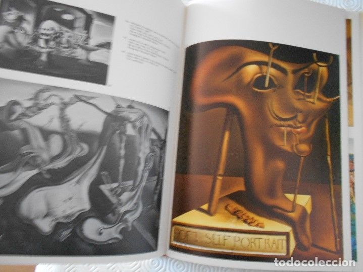 Libros de segunda mano: COMPENDIO DE PLANTAS CITADAS EN EL LIBRO EL INGENIOSO HIDALGO DON QUIJOTE DE LA MANCHA. EDICION UNIC - Foto 9 - 177783035