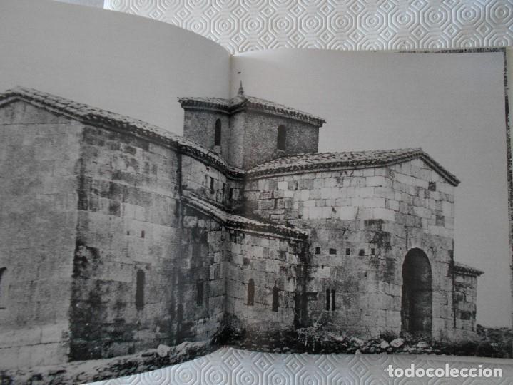 Libros de segunda mano: COMPENDIO DE PLANTAS CITADAS EN EL LIBRO EL INGENIOSO HIDALGO DON QUIJOTE DE LA MANCHA. EDICION UNIC - Foto 12 - 177783035