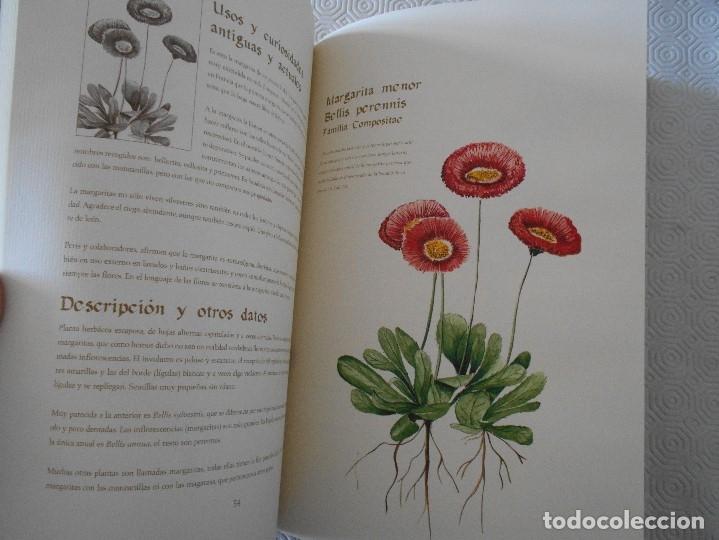 Libros de segunda mano: COMPENDIO DE PLANTAS CITADAS EN EL LIBRO EL INGENIOSO HIDALGO DON QUIJOTE DE LA MANCHA. EDICION UNIC - Foto 17 - 177783035
