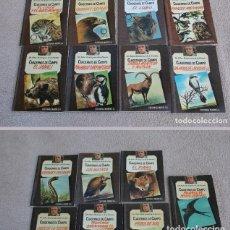 Libros de segunda mano: FELIX RODRIGUEZ DE LA FUENTE.CUADERNOS DE CAMPO.LOTE.EDITORIAL MARIN 1978.LINCE.AMIGO FELIX.FAUNA. Lote 176287219
