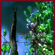 Libros de segunda mano: MACROINVERTEBRADOS DE LAS AGUAS DE GALICIA. LIBRO NUEVO Y PRECINTADO.. Lote 178953148