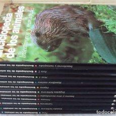 Libros de segunda mano: ENCICLOPEDIA DE LOS ANIMALES - 11 TOMOS - CIRCULO DE LECTORES 1991 - VER DESCRIPCIÓN Y FOTOS. Lote 179064448