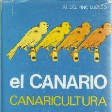 Libros de segunda mano: PINO LUENGO, M. DEL: EL CANARIO. CANARICULTURA.. Lote 179319747