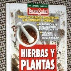 Libros de segunda mano: HIERBAS Y PLANTAS QUE CURAN POR BUENA SALUD DE ED. LIBRO LATINO EN MADRID 1997. Lote 180251935