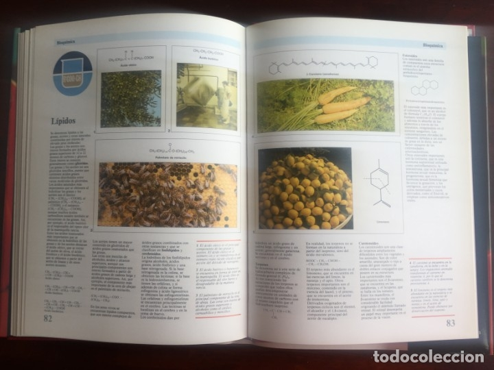 Libros de segunda mano de Ciencias: Atlas de Quimica. Colección gran enciclopedia de las ciencias. Completo compendio sobre la química, - Foto 19 - 180255681