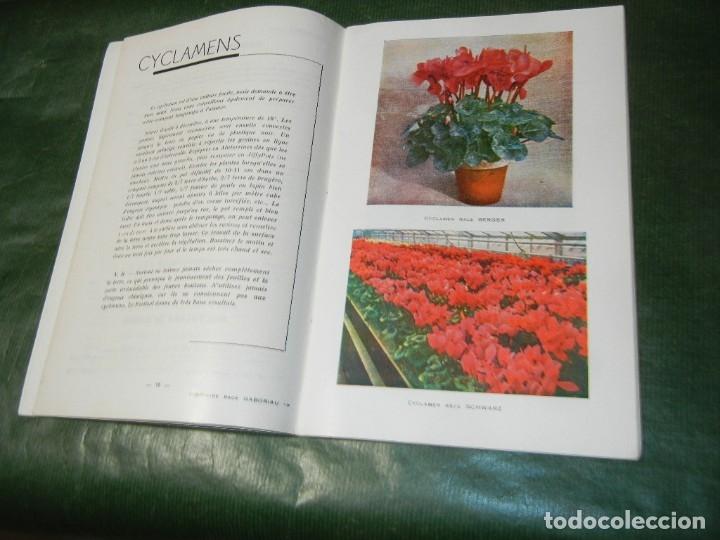 Libros de segunda mano: CATALOGO ÉTÉ AUTOMNE ANNEE 1965 CHARLES GABORIAU GRAINES -BIARRITZ - Foto 3 - 180271732