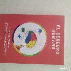 Libros de segunda mano: EL CEREBRO HUMANO - LIBRO DE TRABAJO - DIAMOND, SCHEIBEL, ELSON - EDITORIAL ARIEL. Lote 180906322