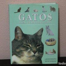Libros de segunda mano: GATOS RAZAS, CUIDADOS,HISTORIA ( 1.000 FOTOGRAFIAS MAS DE 300 RAZAS ). Lote 183748778