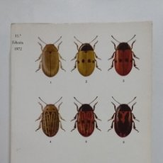 Libros de segunda mano: BIOLOGÍA GENERAL. TOMO II - DR. S. ALVARADO. 1972. TDK430. Lote 183852792
