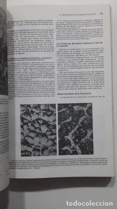 Libros de segunda mano de Ciencias: BIOLOGIA CELULAR Y MOLECULAR - E.D.P. DE ROBERTIS Y E.M.F. DE ROBERTIS. EDITORIAL EL ATENEO. TDK422 - Foto 2 - 183859872