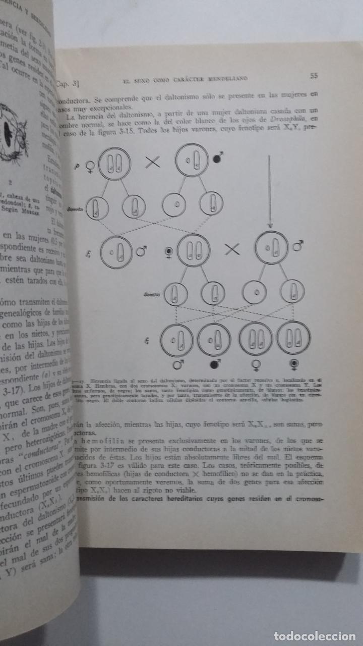 Libros de segunda mano: BIOLOGÍA GENERAL I Y II (2 VOLÚMENES) SALUSTIO ALVARADO. TDK422 - Foto 3 - 183865333