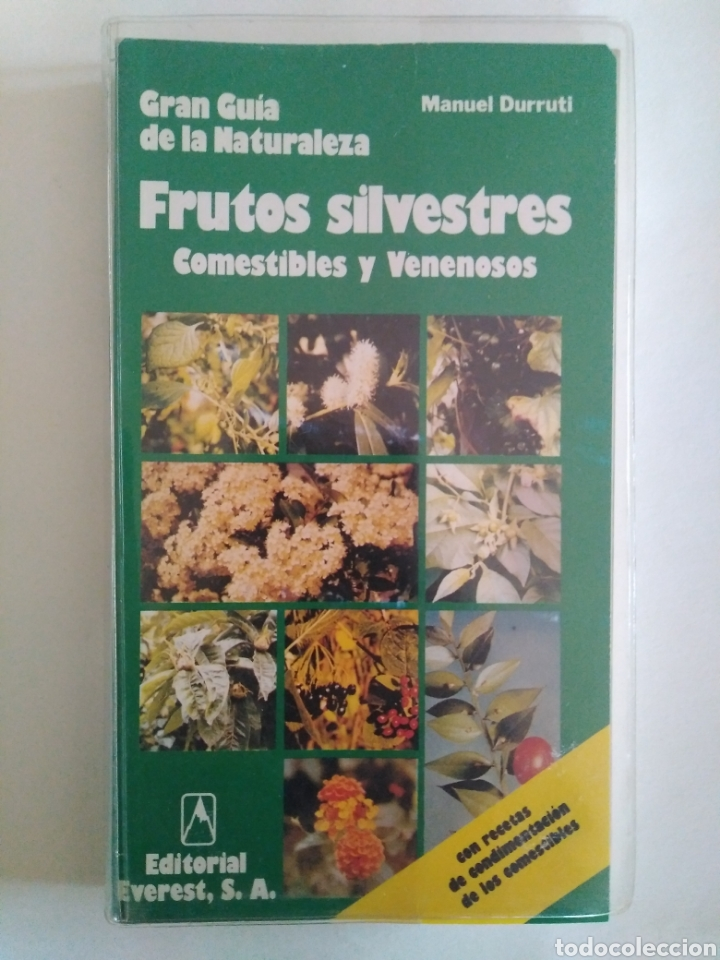 FRUTOS SILVESTRES COMESTIBLES Y VENENOSOS / MANUEL DURRUTI. GUÍA NATURALEZA EVEREST. (Libros de Segunda Mano - Ciencias, Manuales y Oficios - Biología y Botánica)