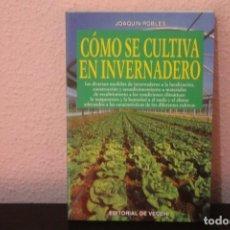 Libros de segunda mano: COMO SE CULTIVA EN INVERNADERO. Lote 184231245