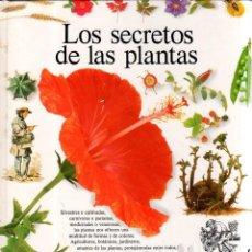 Libros de segunda mano: LOS SECRETOS DE LAS PLANTAS. DAVID BURNIE. BIBLIOTECA VISUAL. CIRCULO DE LECTORES. 1989.. Lote 185789163