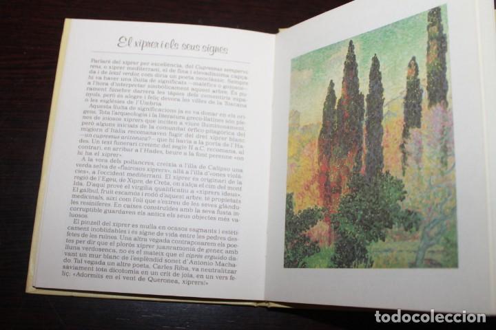 Libros de segunda mano: la crida dels arbres editorial elfos alo 1988 - Foto 2 - 186181065