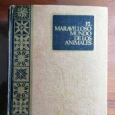 Libros de segunda mano: EL MARAVILLOSO MUNDO DE LOS ANIMALES. 1966. MIGUEL FUSTE ARA. RODEGAR. Lote 187114497
