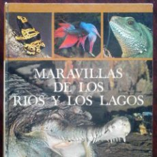 Libros de segunda mano: MARAVILLAS DE LOS RÍOS Y LOS LAGOS (FRANL DE GRAAF) MARS IVARS 1971. Lote 187532100