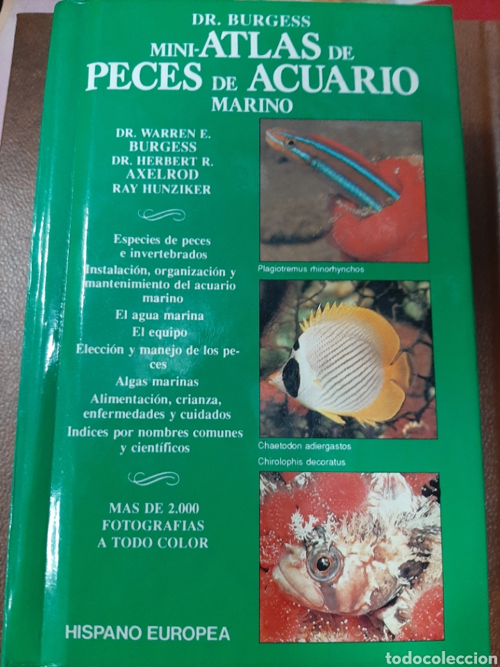 Mini Atlas De Peces De Acuario Marino Dr Bur Vendido En Venta Directa 188677606
