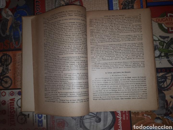 Libros de segunda mano: Einführung in die Biologie. Prof. Dr. Karl Kraepelin. Berlín, 1921. - Foto 6 - 188819341
