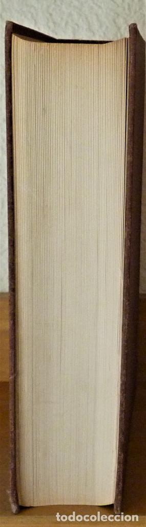 Libros de segunda mano de Ciencias: ELEMENTOS DE MATEMÁTICA - PEDRO ABELLANAS - Foto 5 - 189556861