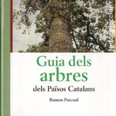 Libros de segunda mano: RAMON PASCUAL : GUIA DELS ARBRES DELS PAÏSOS CATALANS (PÒRTIC, 1999). Lote 190760862