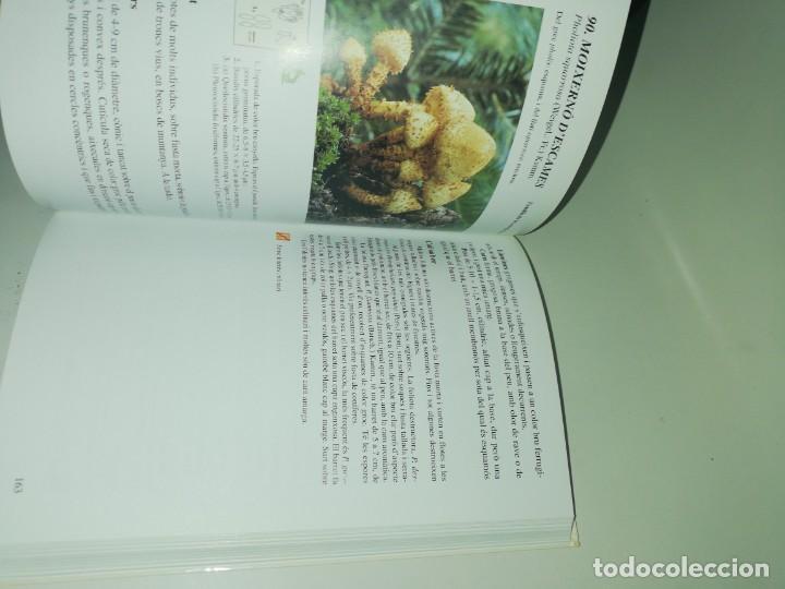 Libros de segunda mano: Ramon pascual, guía dels bolets dels paisos catalans - Foto 3 - 190884976
