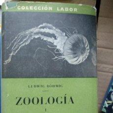 Libros de segunda mano: ZOOLOGÍA I INVERTEBRADOS ( CON EXCEPCIÓN DE LOS INSECTOS ) - L. BÖHMIO - . Lote 191207272