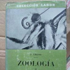 Libros de segunda mano: PROF. J. GROSS - ZOOLOGÍA II: INSECTOS. Lote 191207928