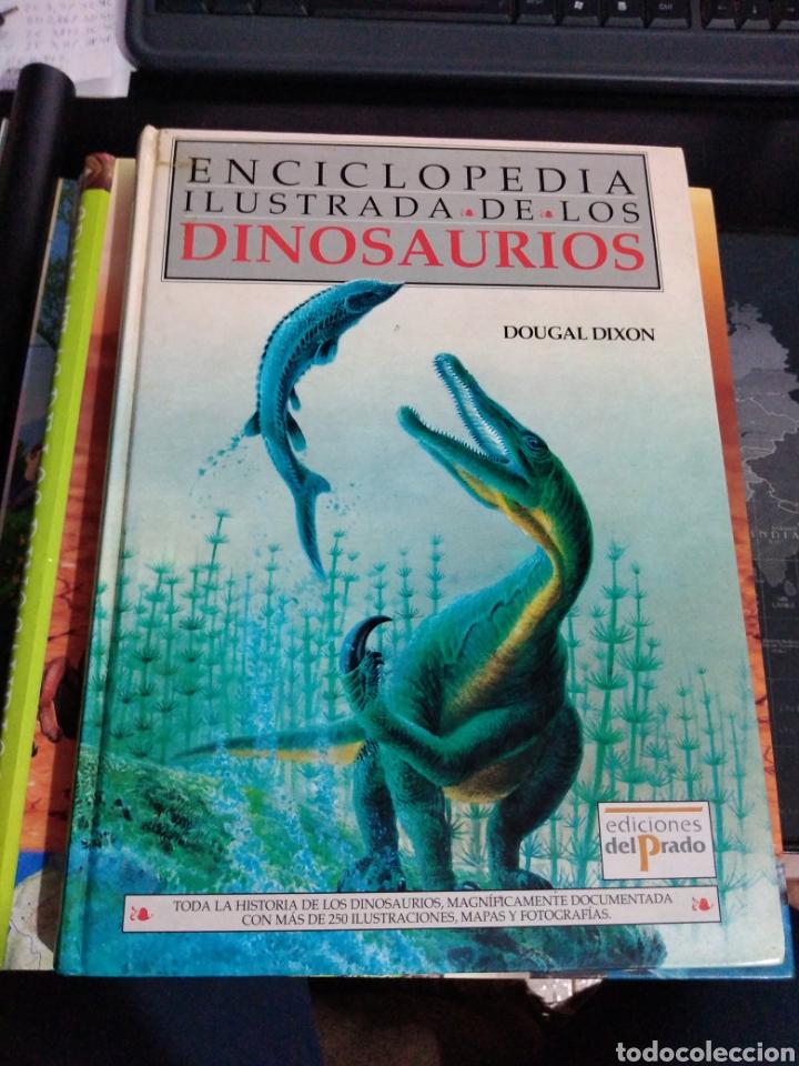 ENCICLOPEDIA ILUSTRADA DE LOS DINOSAURIOS ED EL PRADO 250 ILUSTRACIONES MAPAS DOUGAL DIXON (Libros de Segunda Mano - Ciencias, Manuales y Oficios - Paleontología y Geología)