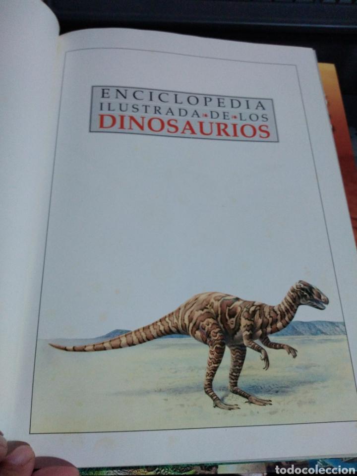 Libros de segunda mano: Enciclopedia ilustrada de los dinosaurios Ed El Prado 250 ilustraciones mapas Dougal Dixon - Foto 4 - 179544857