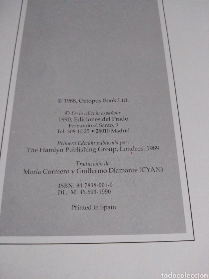 Libros de segunda mano: Enciclopedia ilustrada de los dinosaurios Ed El Prado 250 ilustraciones mapas Dougal Dixon - Foto 5 - 179544857
