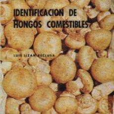 Libros de segunda mano: * SETAS * MICOLOGÍA * IDENTIFICACIÓN DE HONGOS COMESTIBLES / LUIS LIZÁN RECLUSA. Lote 193217903