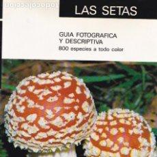 Libros de segunda mano: * MICOLOGÍA * HONGOS * SETAS : GUÍA FOTOGRÁFICA Y DESCRIPTIVA / RAMÓN MENDAZA RINCÓN DE ACUÑA .... Lote 193218371
