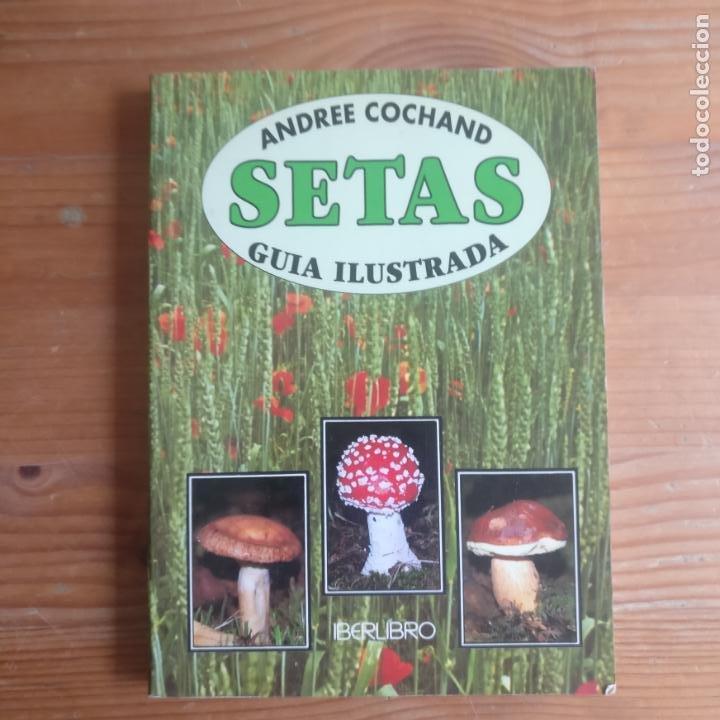 SETAS: GUÍA ILUSTRADA GIMÉNEZ SALES, MIGUEL PUBLICADO POR ULTRAMAR. (1997) 126PP (Libros de Segunda Mano - Ciencias, Manuales y Oficios - Biología y Botánica)