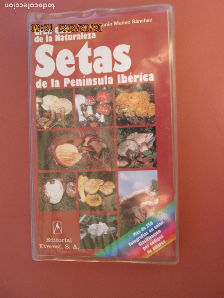 GRAN GUÍA DE LA NATURALEZA - SETAS DE LA PENÍNSULA IBÉRICA - EDITORIAL EVEREST 1998. (Libros de Segunda Mano - Ciencias, Manuales y Oficios - Biología y Botánica)
