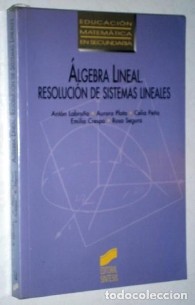 ALGEBRA LINEAL POR ANTÓN LABRAÑA Y OTROS DE ED. SÍNTESIS EN MADRID 1995 (Libros de Segunda Mano - Ciencias, Manuales y Oficios - Física, Química y Matemáticas)