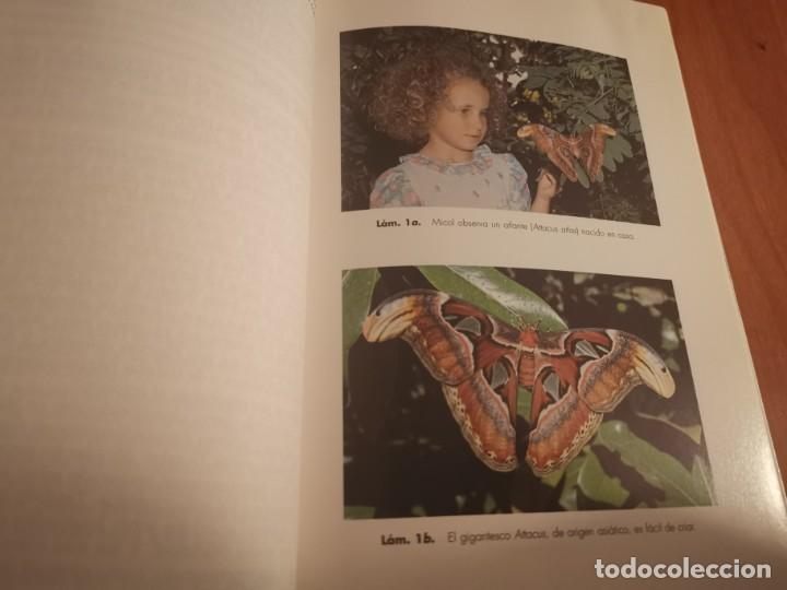 Libros de segunda mano: MAGNÍFICO LIBRO ELOGIO DEL INSECTO POR ENRICO STELLA ARIEL CIENCIA 1993 - Foto 8 - 194246817