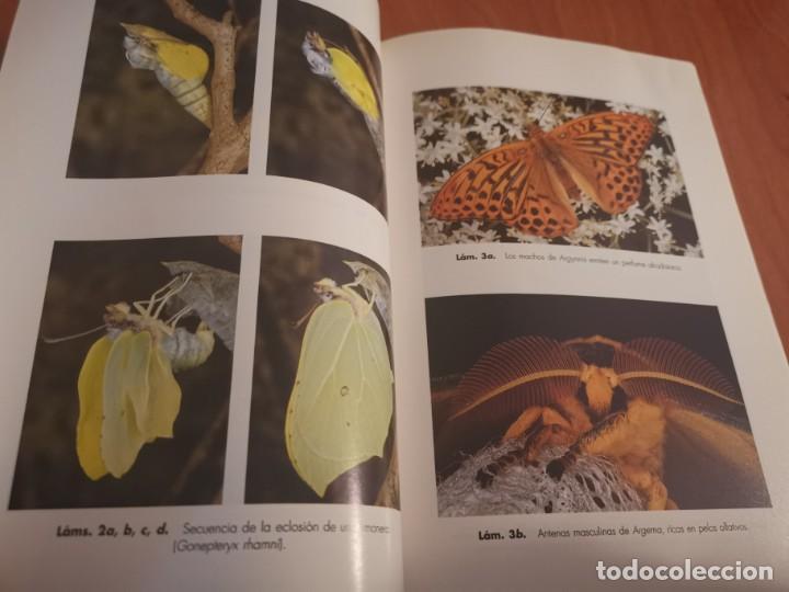 Libros de segunda mano: MAGNÍFICO LIBRO ELOGIO DEL INSECTO POR ENRICO STELLA ARIEL CIENCIA 1993 - Foto 9 - 194246817