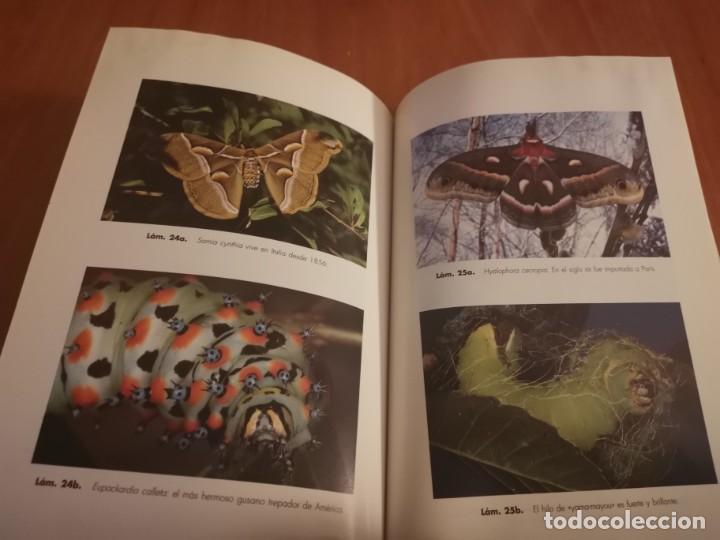 Libros de segunda mano: MAGNÍFICO LIBRO ELOGIO DEL INSECTO POR ENRICO STELLA ARIEL CIENCIA 1993 - Foto 21 - 194246817