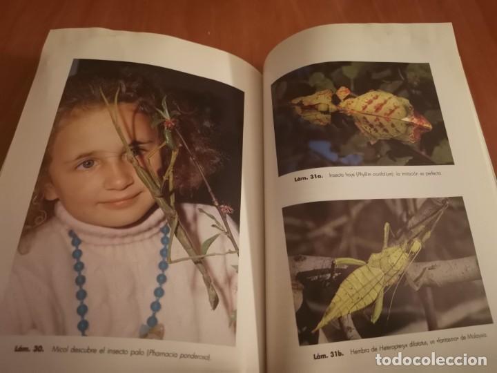 Libros de segunda mano: MAGNÍFICO LIBRO ELOGIO DEL INSECTO POR ENRICO STELLA ARIEL CIENCIA 1993 - Foto 24 - 194246817
