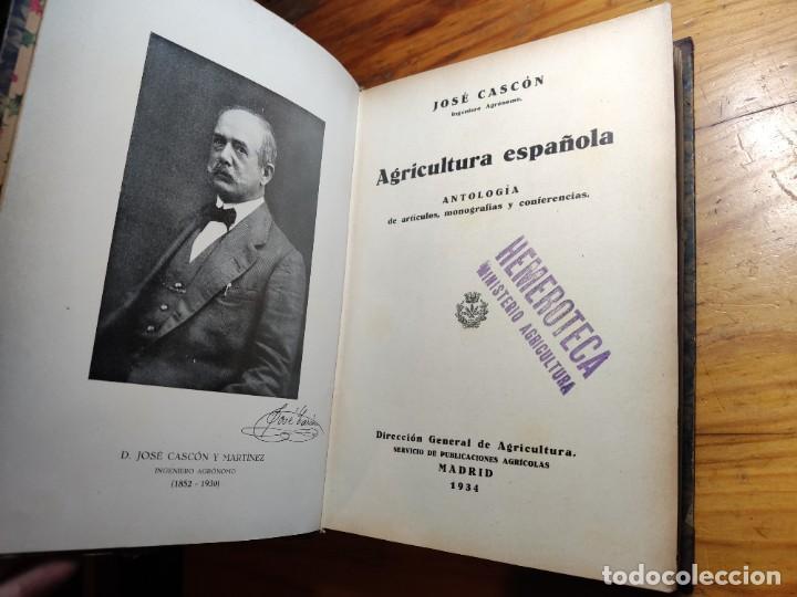 Libros de segunda mano: AGRICULTURA ESPAÑOLA. ANTOLOGÍA DE ARTÍCULOS, MONOGRAFÍAS Y CONFERENCIAS. CASCÓN Y MARTÍNEZ, J. 1934 - Foto 2 - 194339663