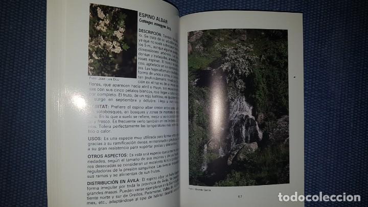 Libros de segunda mano: Árboles de Ávila - Foto 2 - 194345108