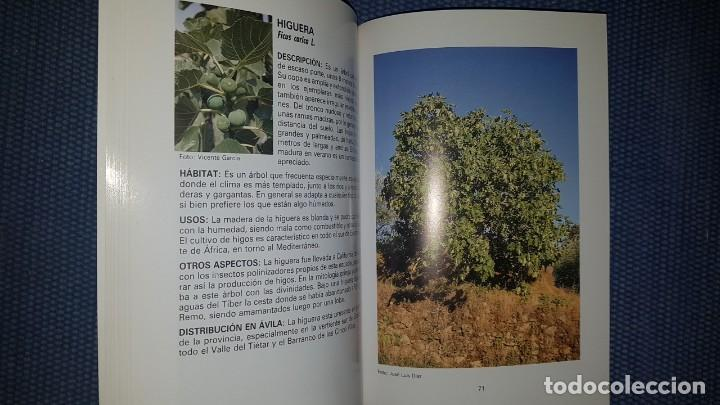 Libros de segunda mano: Árboles de Ávila - Foto 3 - 194345108